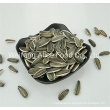 All Kinds of Chinese Seeds Supplier Bulk Quality Raw Sunflower Seeds 601/5009