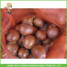 Exportar Cebola Em Bulk Cebolas Redondas