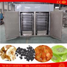 Equipamento industrial de secagem de frutas e vegetais Desidratador