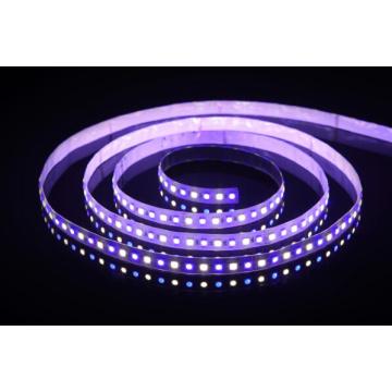 UL High CRI Epistar 5050 RGBW Faixa Flexível 6500k, luz LED