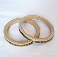 Spring Energized Seals for Industrial From China