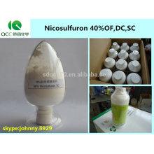 Producto fitosanitario / Nicosulfuron sc, nicosulfuron 40% OF, 40% DC, 40% SC / 40g / L OD herbicida -lq