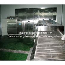 Machine de congélation fluidisée individuelle