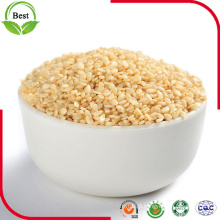 High Quality Toasted Natural White Sesame Seeds