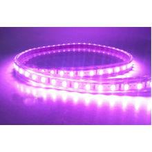 Impermeable 5050SMD Tira de luz LED flexible 60LEDs / M Color púrpura para árbol de Navidad Aprobaciones CE RoHS