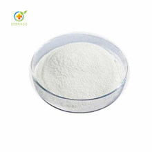 Hydrolyzed Wheat Isolate Protein Supplement Powder