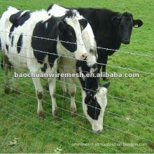 Cerca galvanizada caliente del campo del ganado con precio competitivo en almacén