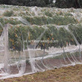 Anti Bird Safety Black Rajutan HDPE Plastik Net
