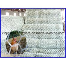Preço barato Hexagonal Wire Netting