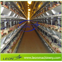 Leon series poultry cage with automatic feeding system