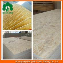 1220*2440 Furniture Grade 100% Poplar Plain Particle Board/OSB