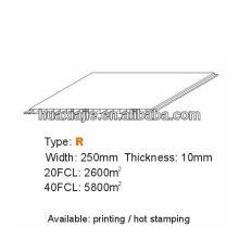 Panneau intérieur en PVC250mm * 10mm