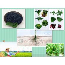 NPK Compound Organic Rice, Wheat, Corn Fertilizer