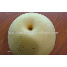 china pear low price pear,good qulity pear,golden pear