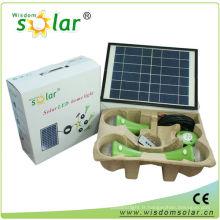 Intelligent CE mini maison lampe solaire avec 3 LED ampoule light(JR-SL988A)