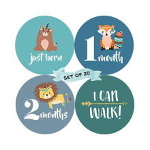 Baby Monthly Stickers Custom Printed Vinyl Baby First Memory Year Floral Baby Monthly Milestone Stickers