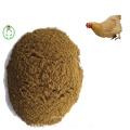 Meat Bone Meal Animal Food Health Feed Pet Feed