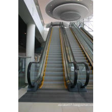 FUJI Zy Energysaving Top 6 Best Buys Amazing Scence Escalator