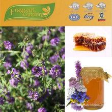 pure natural raw honey seller