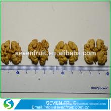 China por grosso noz de nozes nozes secas noz kernel preço