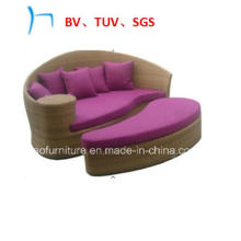 Outdoor Furniture Rattan Furniture Leisure Day Bed (FL015)