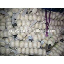 10kg carton packing carton garlic