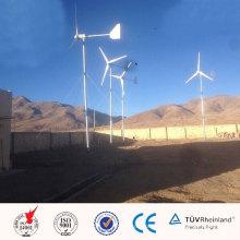 2kw Kit de generador de viento hecho a mano Tipo de energía eólica