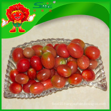 Organic red cherry tomato melon and fruit vegetable