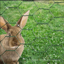 chicken wire mesh rabbit fence green PVC coat steel garden netting