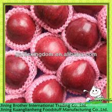 2013 preço maçã vermelha deliciosa