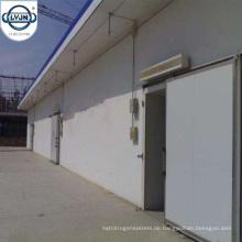 CACR-16 Professional Controlled Atmosphäre Kühlraum Kühlraum für den Großhandel