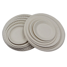 China Factory Food Grade Biodegradable Food Disposable Bagasse Sugarcane Oval Plate