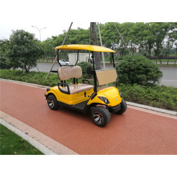 Carrello da golf a gas a 2 posti 300CC