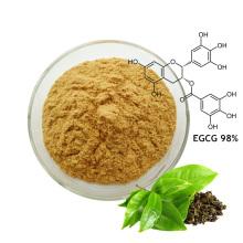 Extrait de thé vert bio Polyphénols EGCG