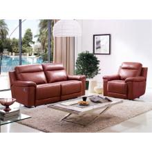 Living Room Genuine Leather Sofa (D907)