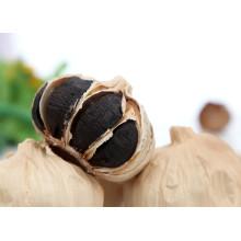 L'ail noir en vrac coréen 2016 à vendre
