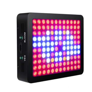 1200W LED Grow Light para fábrica de plantas de invernadero