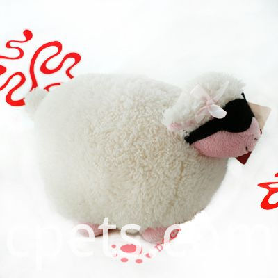 sheep with glasses