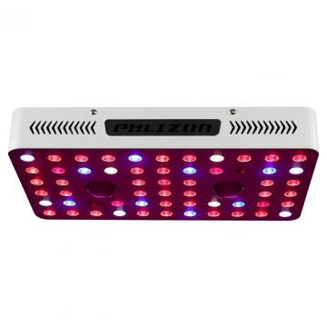 Cob Led Grow Light vs Led