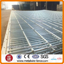 Twin guards double wire mesh fence