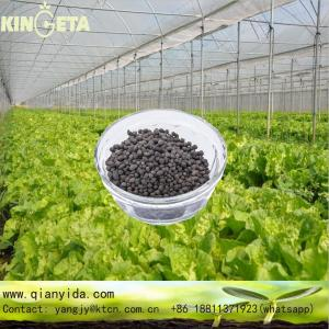 Biohumic Organic Fertilizer Humic Acid Fertilizer