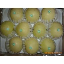 Hochwertige köstliche süße goldene Birne