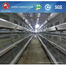 Neues Bauernhaus Design Geflügel Huhn Broiler Batterie Käfig