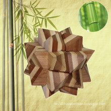 Wholesale Promotional Novelty Intelligent Brain Teaser Natural 3D Star Puzzle for Adults
