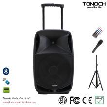 Gute Qualität 15 Zoll Kunststoff Trolley Professional Lautsprecher mit Batterie