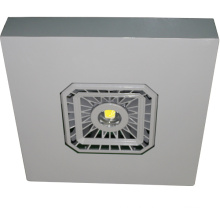 Explosion Proof LED Petrol/ Gas Station Canopy Light
