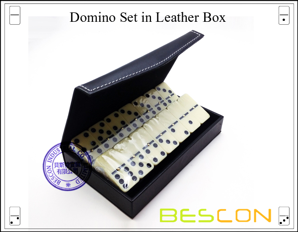 Domino Set in Leather Box