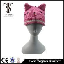 El oído popular del gato del invierno hizo punto el sombrero