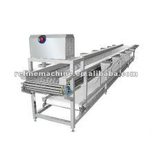 peeled conveyor
