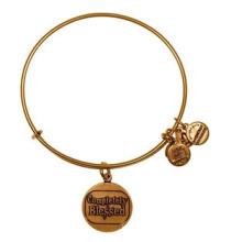 Bracelets Alex et Ani Bangle / Charms Bangle / Fashion (XBL13355)